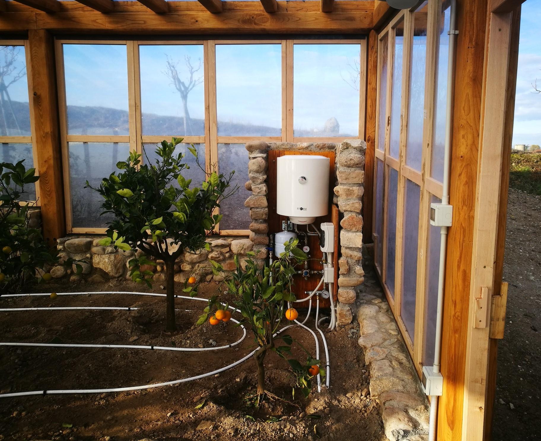 Tecnowood Brescia, come proteggere le piante di limoni